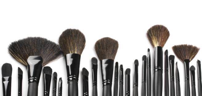 Фото профессиональных кистей для макияжа
